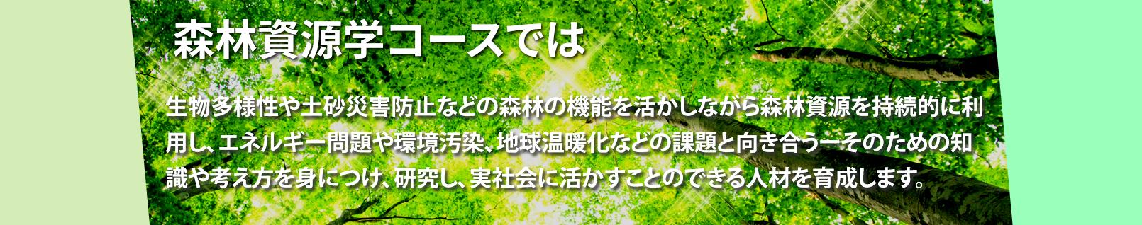 愛媛大学農学部 生物環境 森林資源学コース